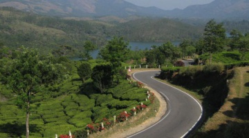 Kerala - La route des épices